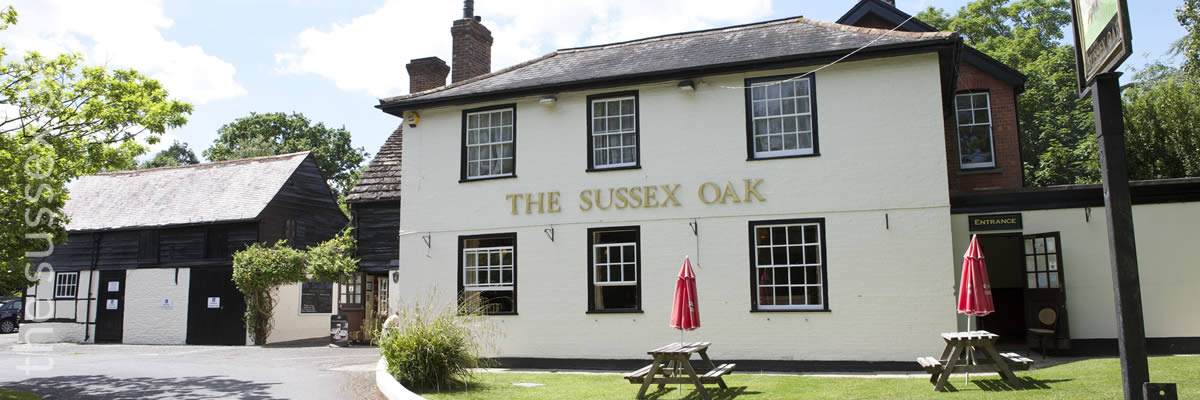 The Sussex Oak